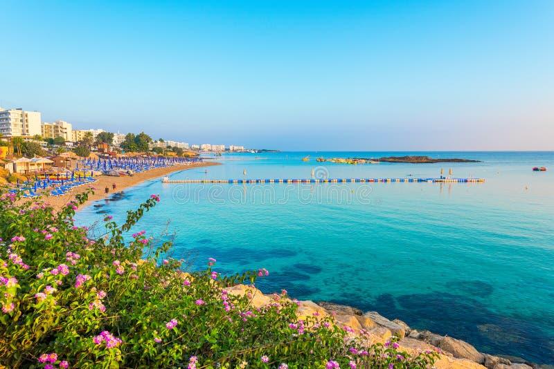 Fikonträdfjärdstrand i Protaras, Cypern royaltyfria foton