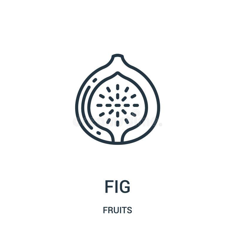 fikonträdsymbolsvektor från fruktsamling Tunn linje illustration för vektor för fikonträdöversiktssymbol r royaltyfri illustrationer