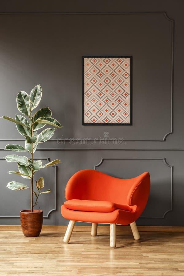 Fikus bredvid den orange fåtöljen mot den gråa väggen med affischen i M royaltyfria foton