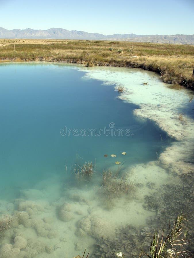 Filón Cuatro Cienegas México de Stromatolite fotografía de archivo