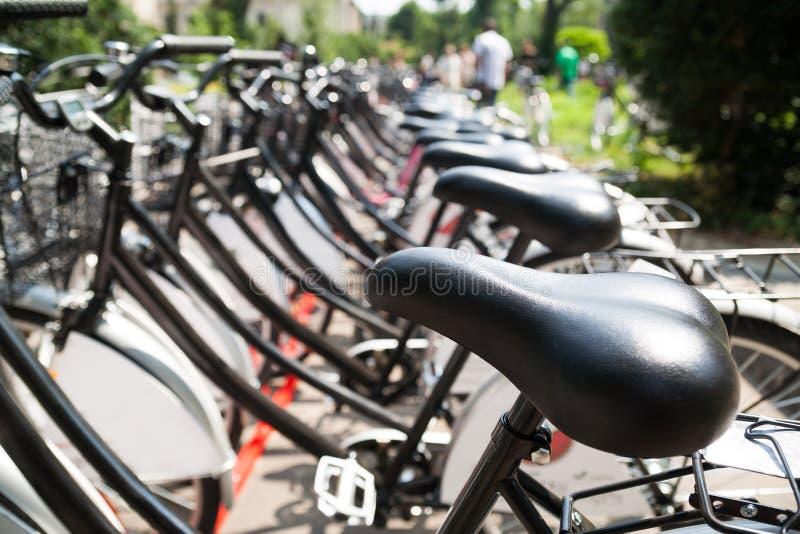 Fila de bicis imagen de archivo libre de regalías