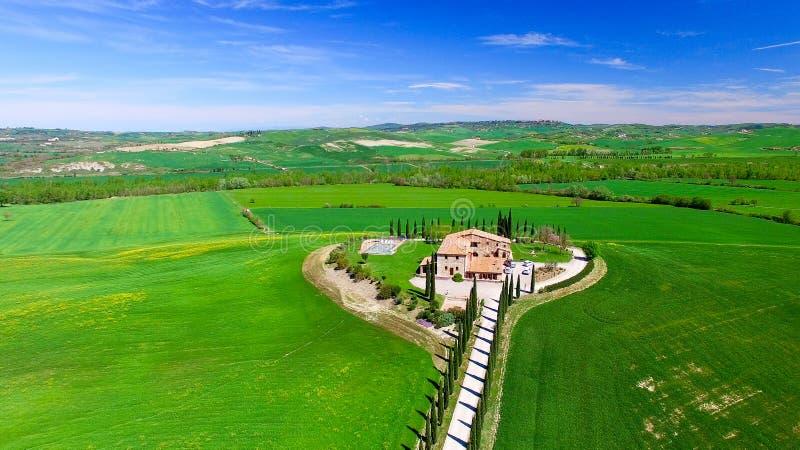 Fila de cipreses en un campo hermoso de Toscana durante sprin imagen de archivo
