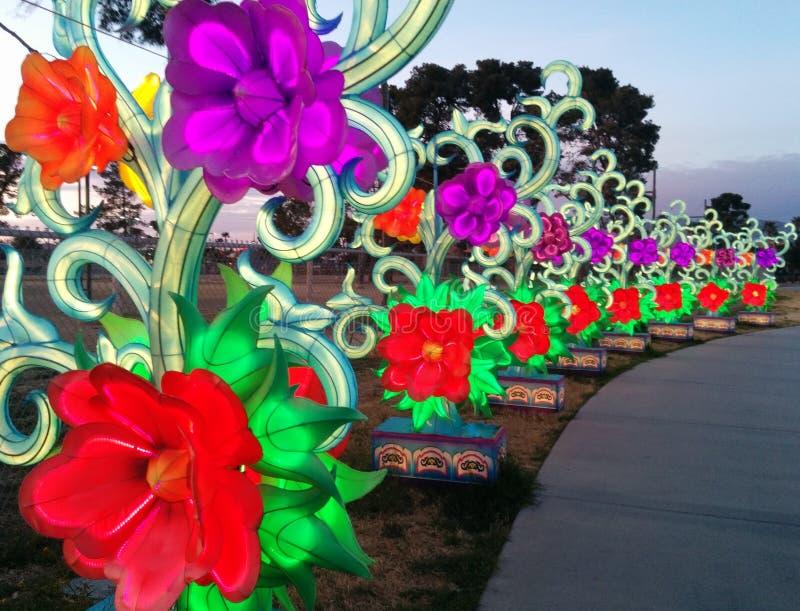 Fila de flores a lo largo de una calzada en el festival de linterna chino imagen de archivo libre de regalías