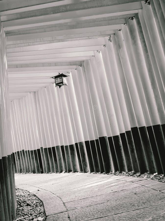 Fila de la trayectoria que camina de las puertas del torii en Fushimi Inari Taisha, Kyoto, imagenes de archivo