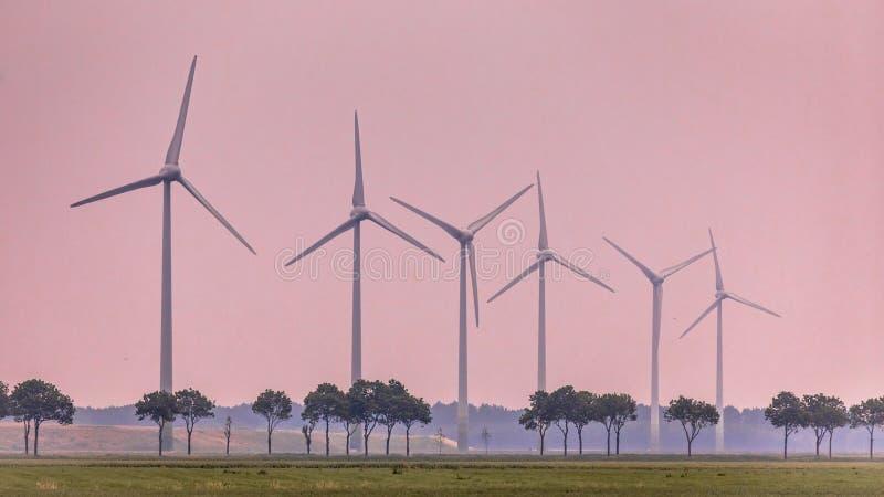 Fila de las turbinas de viento en campo abierto foto de archivo libre de regalías