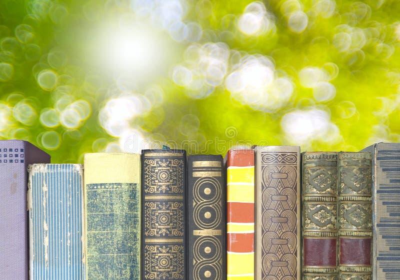 Fila de libros en fondo de la naturaleza foto de archivo