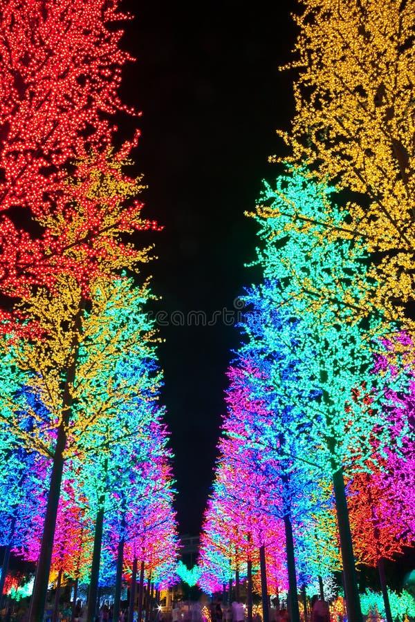 Fila de los árboles artificiales del LED fotos de archivo libres de regalías