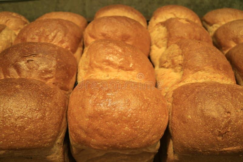 Fila de los panes cocidos frescos deliciosos del pan para el fondo foto de archivo