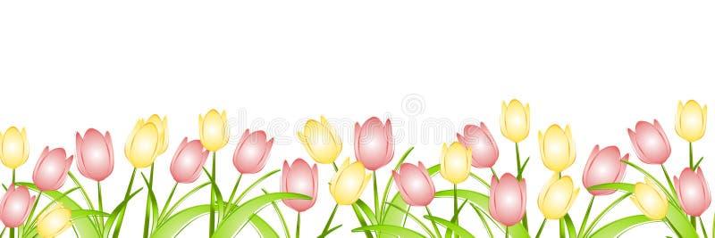 Fila de los tulipanes del resorte   libre illustration