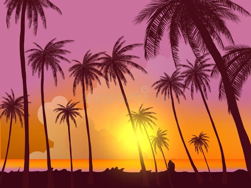 Fila de palmeras tropicales contra el cielo de la puesta del sol Silueta de palmeras altas Paisaje tropical de la tarde Color de  libre illustration