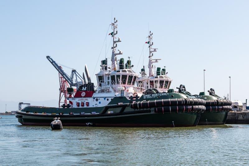 Fila de Tug Boats en el puerto de Ensenada foto de archivo