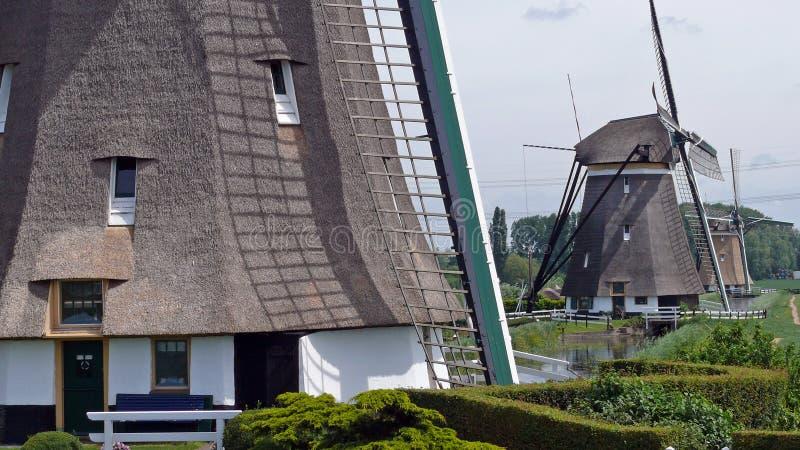 Fila dei mulini a vento in Zuidplas fotografia stock