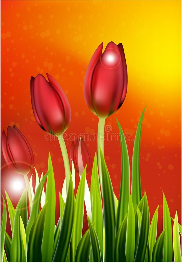Fila dei tulipani della primavera per voi progettazione royalty illustrazione gratis
