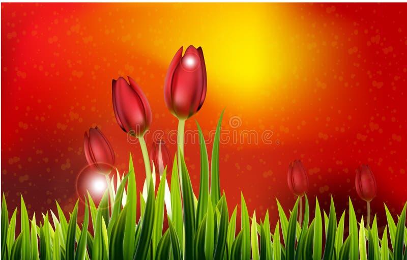 Fila dei tulipani della primavera per voi progettazione illustrazione vettoriale