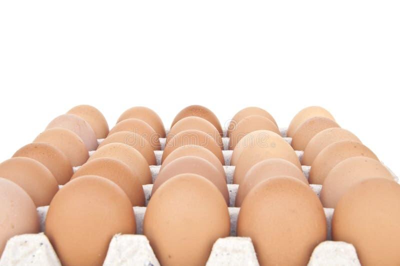 Fila del huevo imagenes de archivo