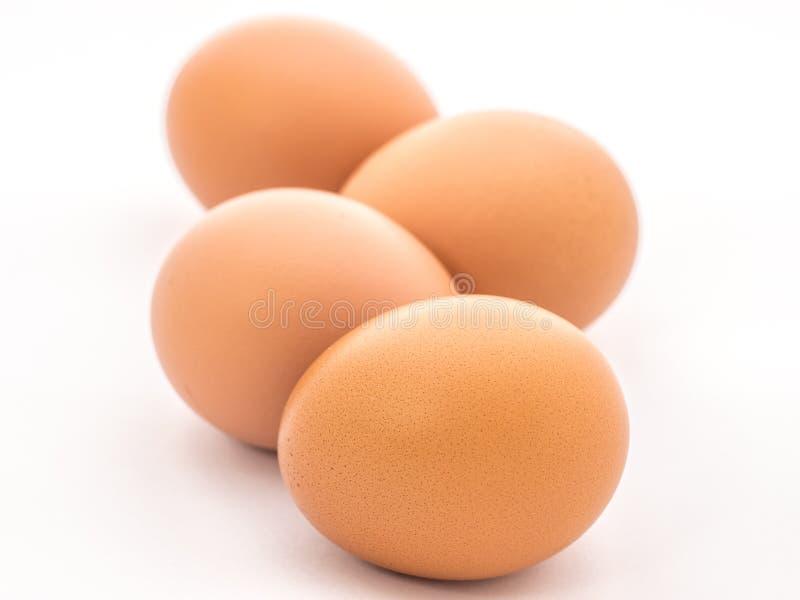 Fila del huevo foto de archivo libre de regalías