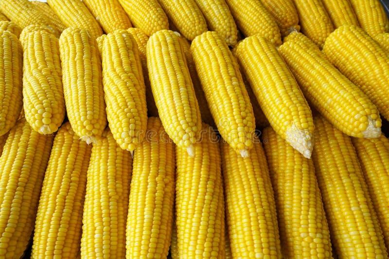 Fila del maíz de la ebullición en el mercado imágenes de archivo libres de regalías