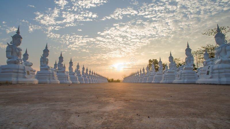 Fila della statua bianca di Buddha fotografia stock libera da diritti