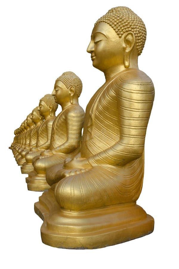 Fila delle statue dorate di Buddha, isolata su fondo bianco fotografia stock libera da diritti