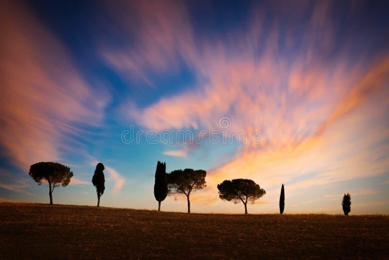 Fila di cipressi al tramonto, cielo spettacolare, paesaggio tipico di Tuscan fotografie stock libere da diritti