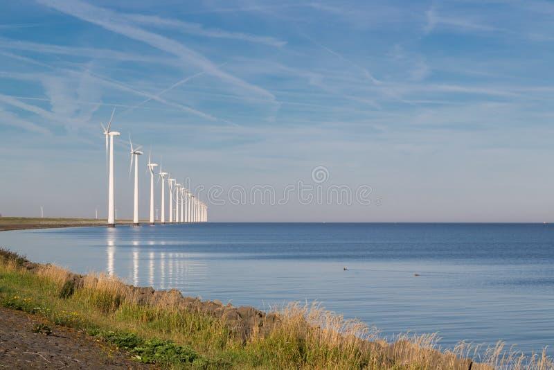 Fila larga de las turbinas de viento de la orilla en el mar holandés fotos de archivo libres de regalías