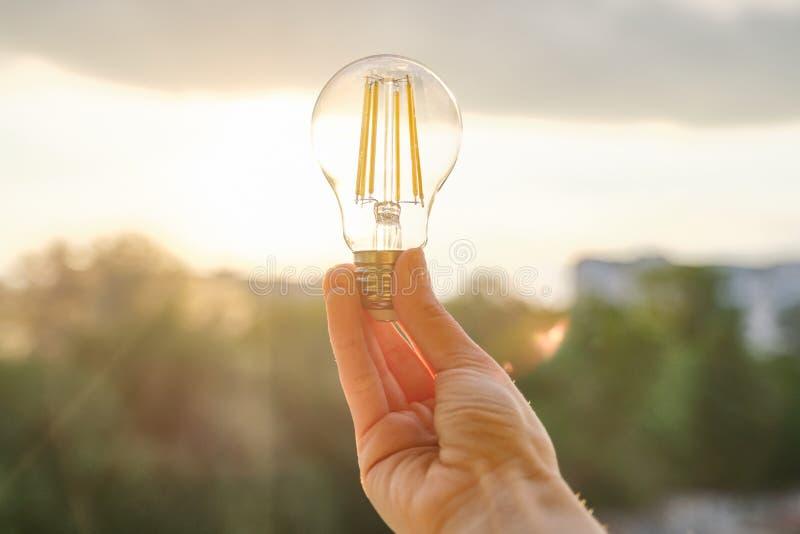 Filament led lightbulbs, hand holding lamp, evening sunset sky background royalty free stock image