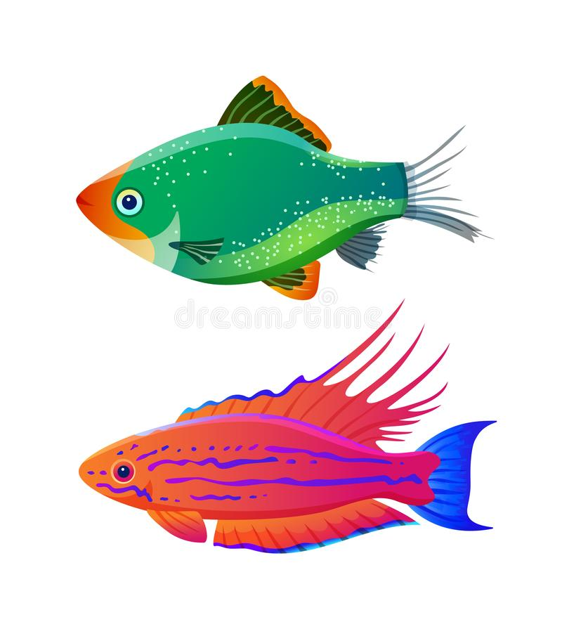 Filamented flasher wrasse and green tiger barb. Freshwater aquarium pets silhouette icon on blank background in cartoon style vector illustration vector illustration