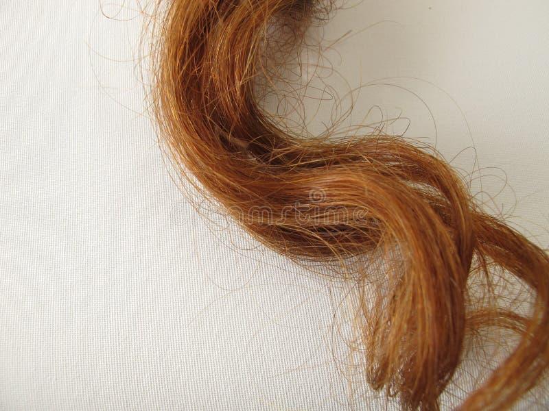 filamento Castaña-marrón del pelo foto de archivo libre de regalías
