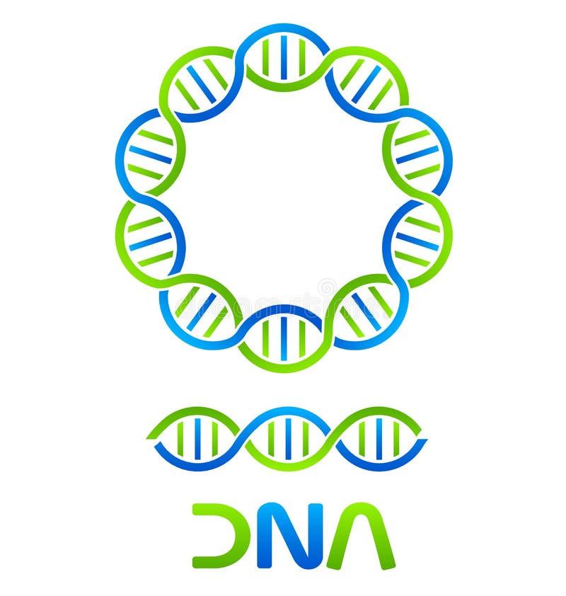 Filamento de la DNA e inconsútil ilustración del vector