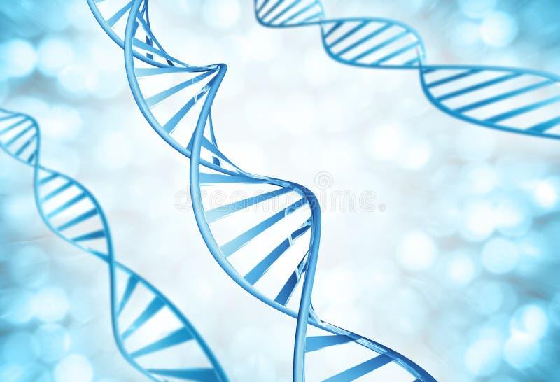 Filamentos genéticos de las moléculas de la DNA magnificadas fotografía de archivo