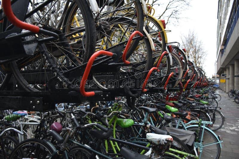 Filas de bicis parqueadas en Amsterdam foto de archivo