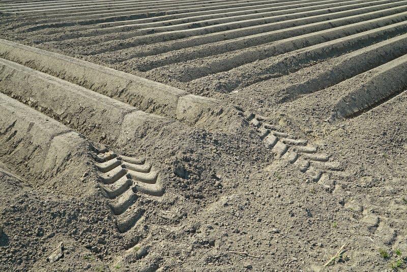 Filas de Brown de la tierra que forman campos del potatoe en Zelanda foto de archivo libre de regalías