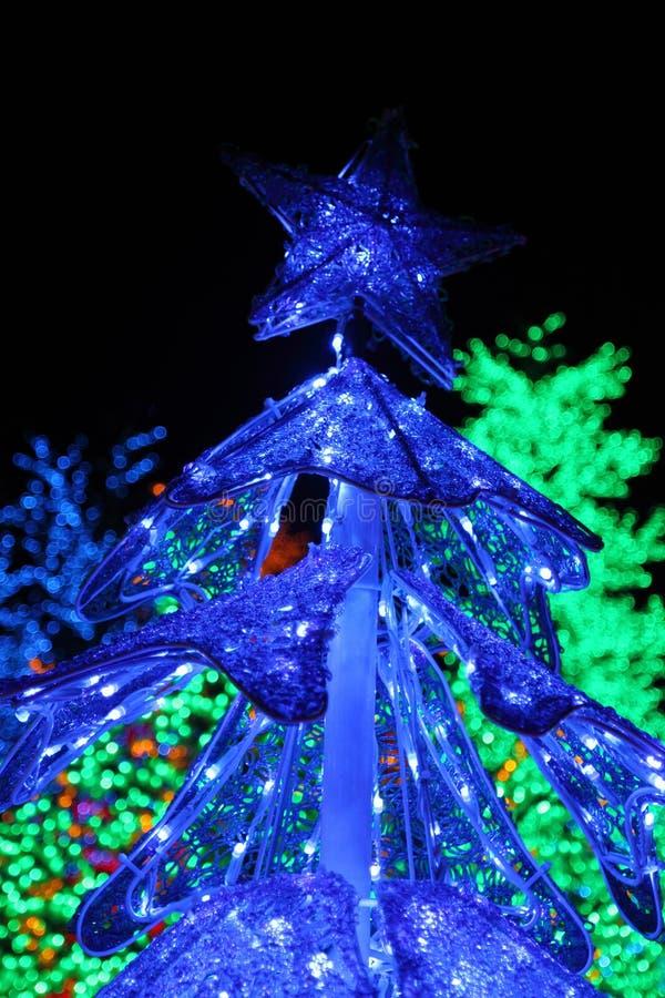Filas de la decoración colorida de los árboles del LED fotografía de archivo libre de regalías