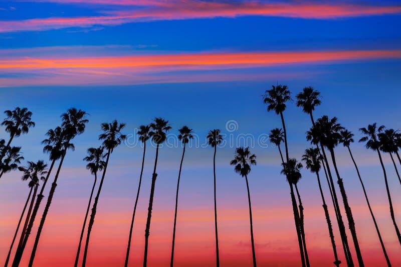 Filas de la palmera de la puesta del sol de California en Santa Barbara imágenes de archivo libres de regalías