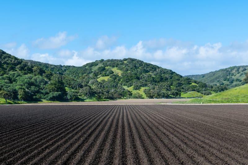 Filas de la tierra desnuda negra rica recientemente arada en perspectiva a las colinas roble-cubiertas verdes hermosas imagen de archivo