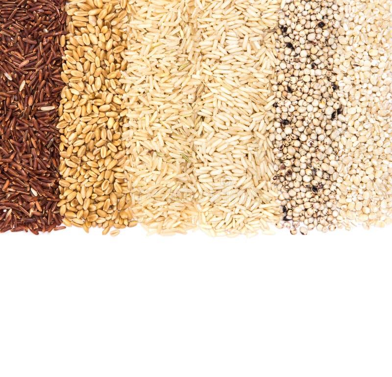 Filas de la variedad del arroz del grano; arroz rojo y blanco grueso, mijo imagenes de archivo