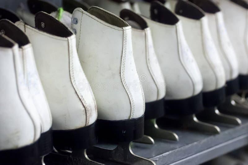 Filas de los patines de hielo blancos, equipo de deportes de invierno, estantes con los patines fotos de archivo libres de regalías
