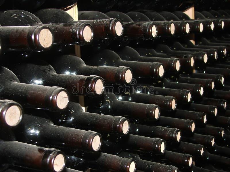 Filas del vino imagenes de archivo