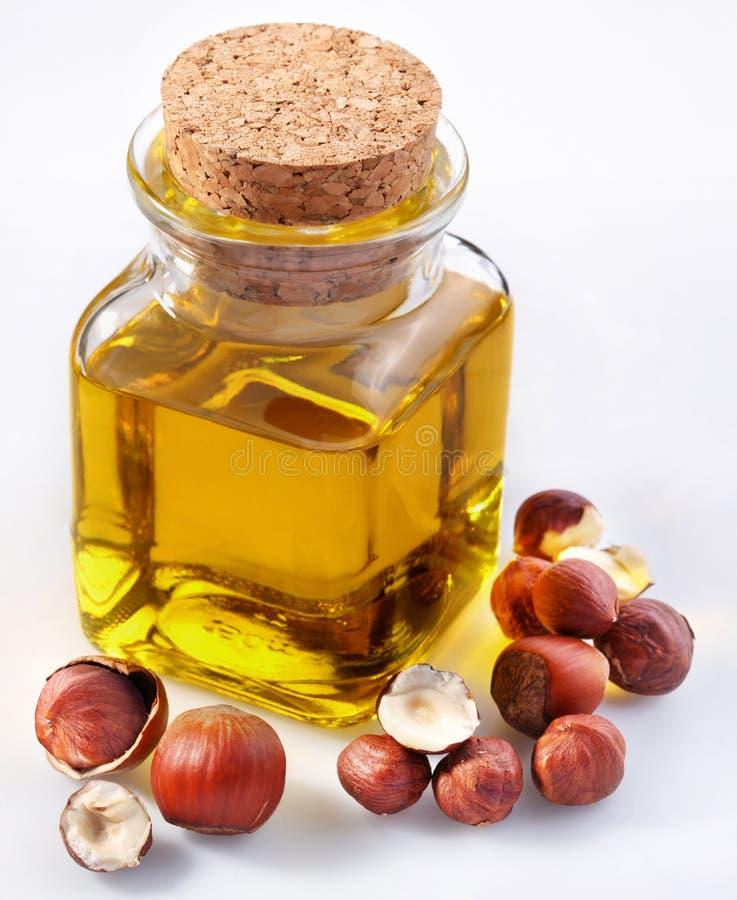 Filbert oil stock image