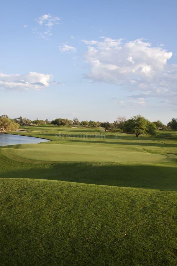 Fild do golfe fotos de stock royalty free