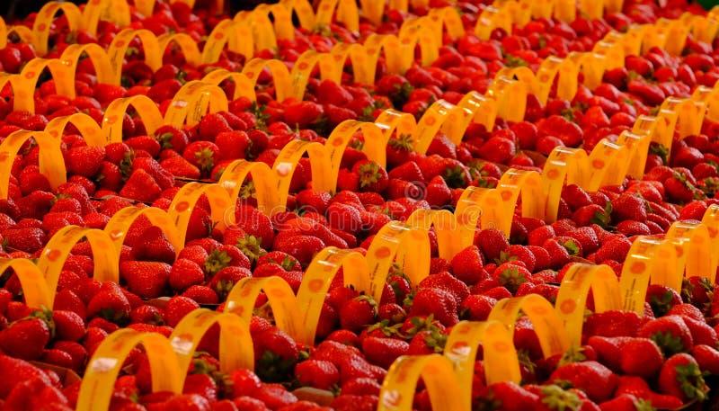 File delle fragole su esposizione al mercato fotografie stock libere da diritti