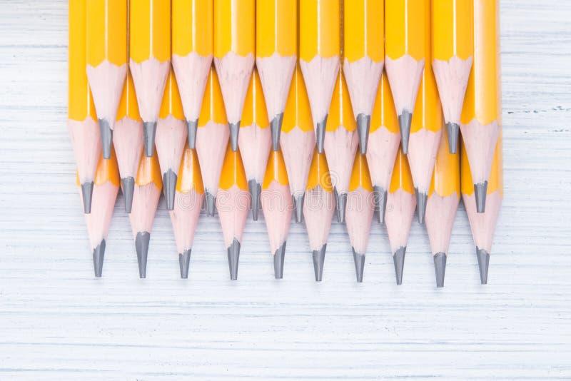 file delle matite semplici acutamente affilate, presentate come fondo su una tavola leggera fotografia stock