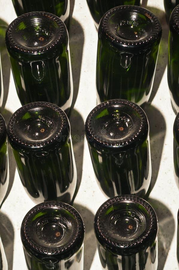 File di scintillare spagnolo, vino bianco in scaffale della tenuta in una cantina della cantina fotografie stock libere da diritti