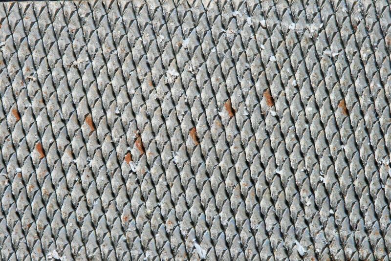 Download File macro stock photo. Image of rows, sharp, rasp, steel - 19103306