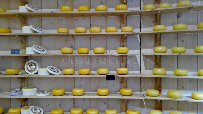 File multiple degli scaffali di legno con le forme di cui sopra di formaggio olandese saporito fotografia stock libera da diritti