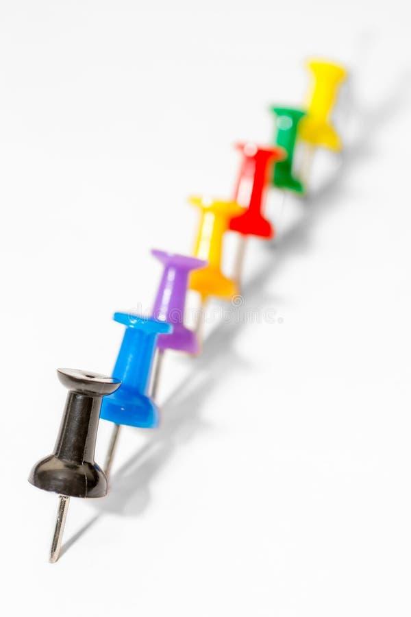 Fileira de agulhas coloridas do pinho no fundo branco no inclinação da agudeza fotos de stock