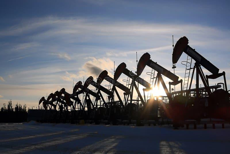 Fileira de jaques da bomba de óleo imagem de stock