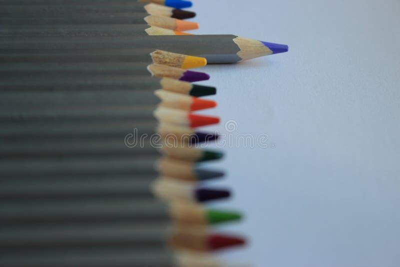 Fileira de lápis coloridos na tabela branca com primeiro plano unfocused Conceito do desenho Pastéis isolados Arco-íris de lápis  fotografia de stock royalty free