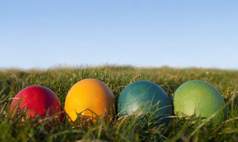 Fileira de ovos de Easter coloridos na grama com céu azul foto de stock royalty free