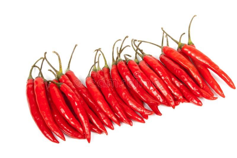 Fileira de pimentões quentes brilhantes vermelhos brilhantes fotografia de stock